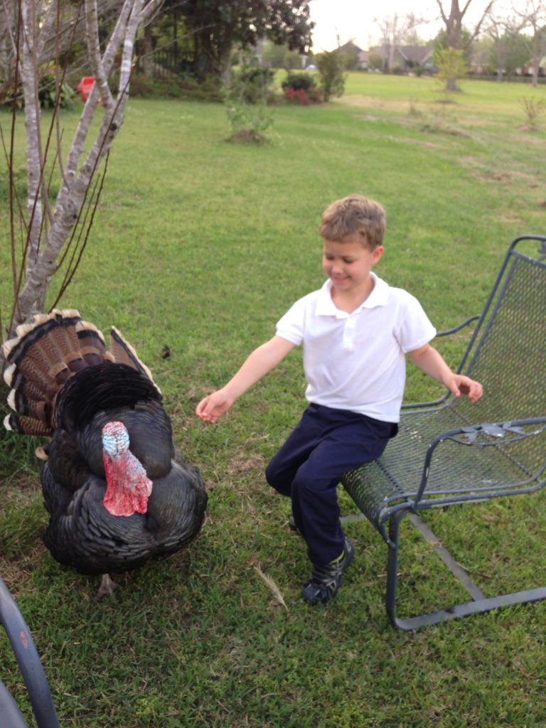Turkey and young boy  in pastoral setting