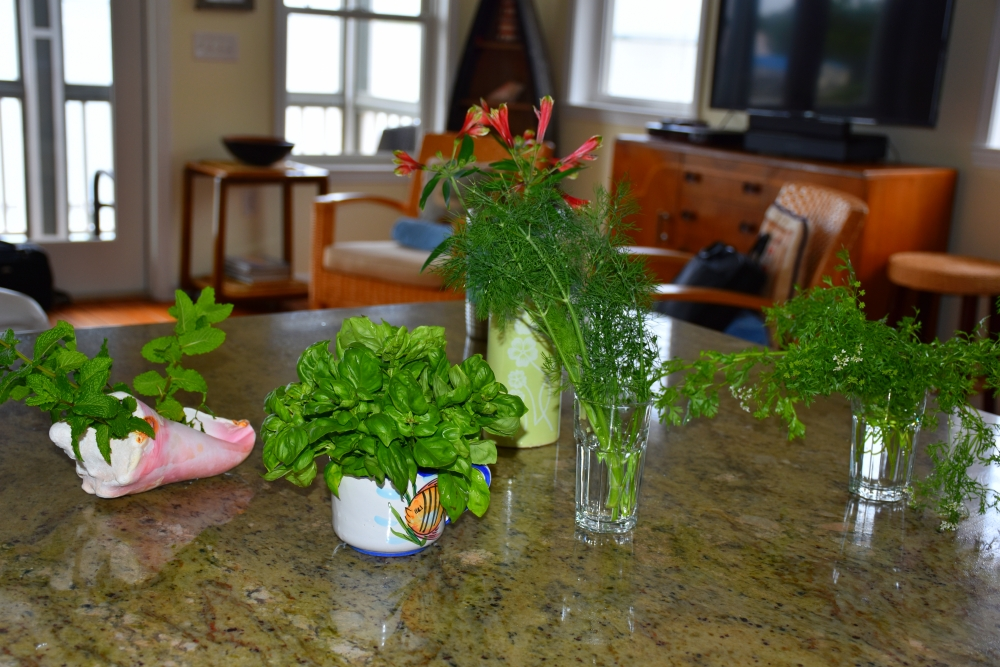 Herbs will travel for Island cooking www.diningwithmimi.com